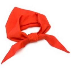 Четвероклассникам повязали галстуки «Радуги детства»