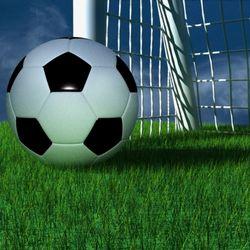Новости Коломны   В Коломенском районе откроется футбольное поле с искусственным покрытием Фото (Коломна)   eto interesno sport otdyih dosug