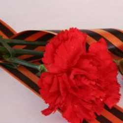 Мемориальную доску Герою Советского Союза Николаю Буряку открыли в Коломне