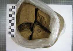 В Подмосковье задержали наркокурьера с 3,5 кг гашиша