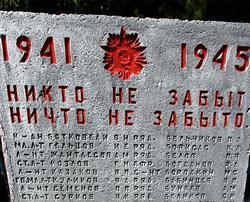 Волонтеры помогли вдовам ветеранов Великой Отечественной войны