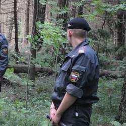 Полицейские будут патрулировать леса