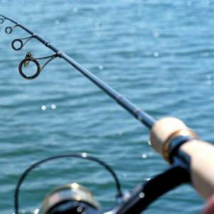 рыбалка спиннинг