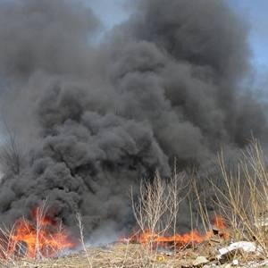 В Коломенском районе Госадмтехнадзором пресечено сжигание заводского мусора