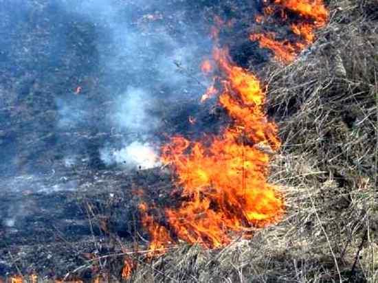 пожар огонь Коломна