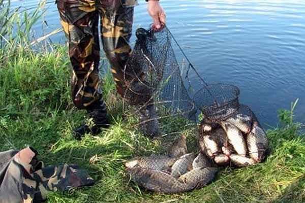 Сотрудников водной полиции Коломны поймали на незаконной рыбалке
