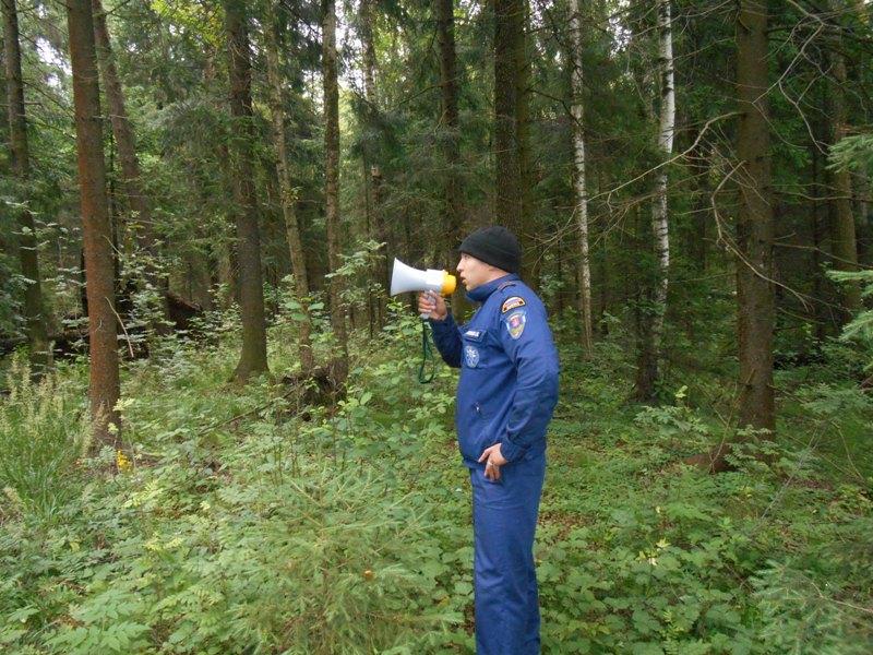35 человек заблудилось в лесах Подмосковья с начала июля