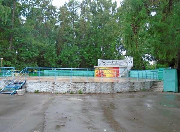 Школы здоровья на свежем воздухе заработают в Коломне