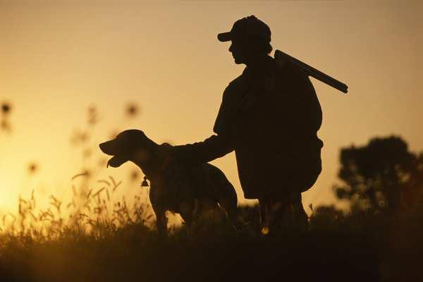 Зачем охотники выращивают птиц