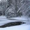 полынья, лёд, река